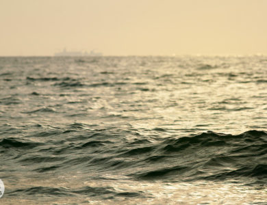 Утренняя волна
