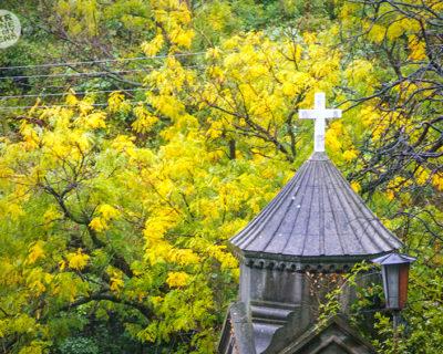 Осенний Дарсан